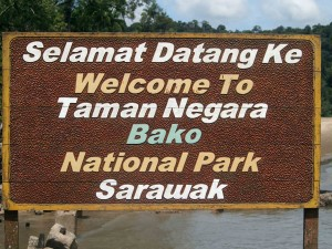 Bako National Park welcomes you
