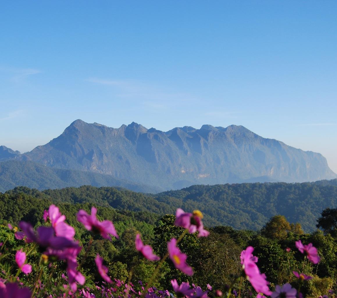 Chiang Dao Thailand  city photos gallery : Doi Luang Chiang Dao – CHIANG MAI