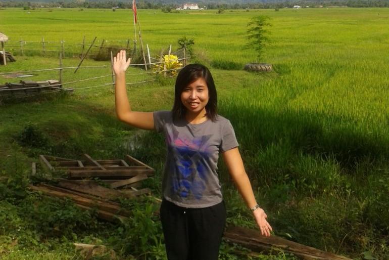 Rice paddies in amazing Langkawi