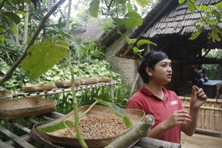 Our knowledgeable guide at Laksmi agro tourism