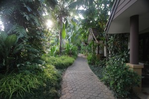 Laluna Hotel and Resort lush gardens