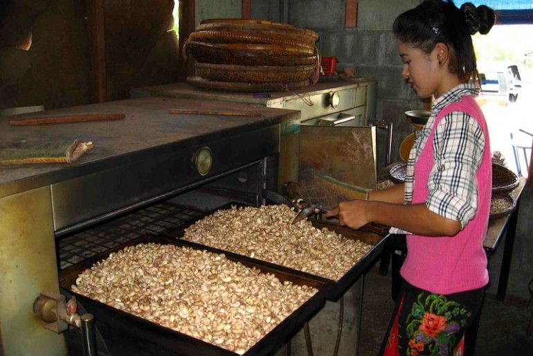 sorting out cashew nuts at the factory