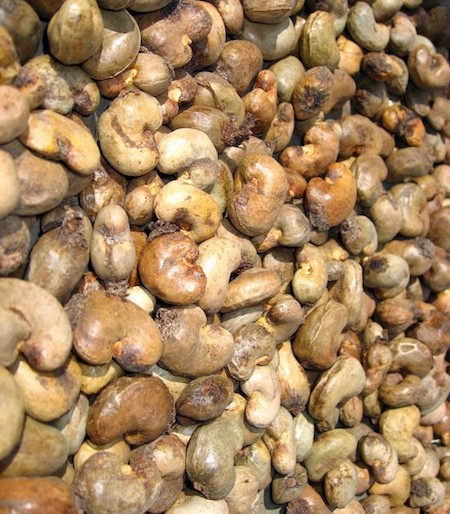 the wonderful looking cashew nuts