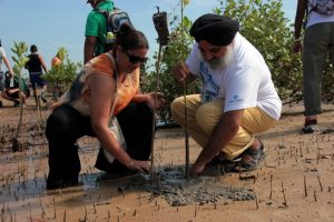 Planting mangroves for a cause