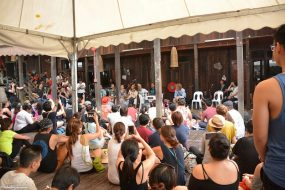 Rainforest World Music Festival 2016 – A volunteer's perception