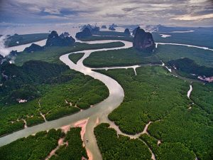 Krabi riverways from top