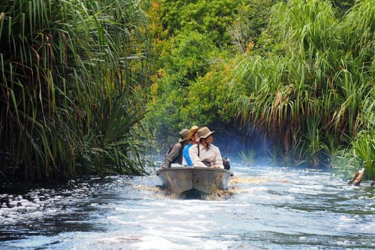 on local boat along Sebangau National Park canals