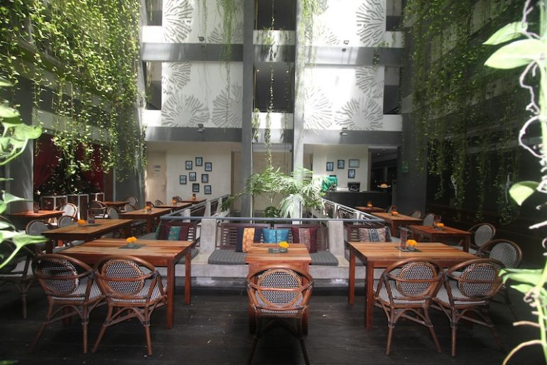 The lush courtyard in the day