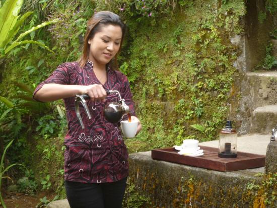 At OKA coffee plantation