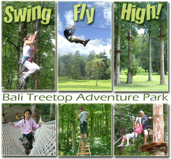 Mixed activities at Bali Treetop