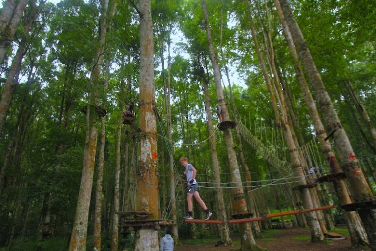 One of the several obstacles at Bali Treetop
