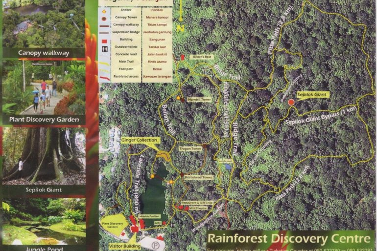 Rainforest Discovery Centre map