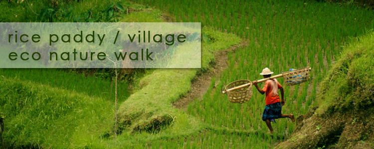 Village eco walk