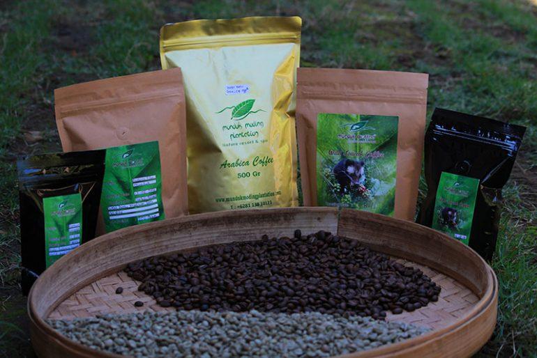 Coffe production at Munduk Moding