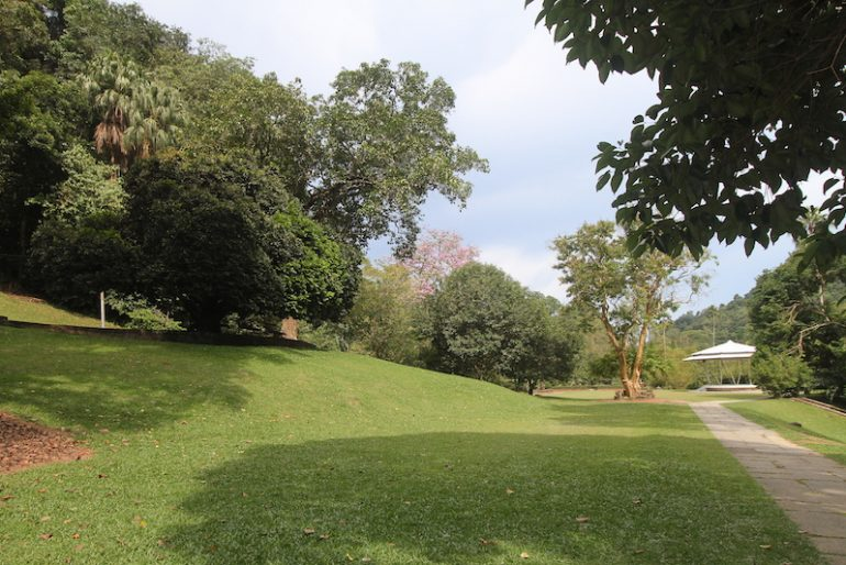Well maintained lawns and paths