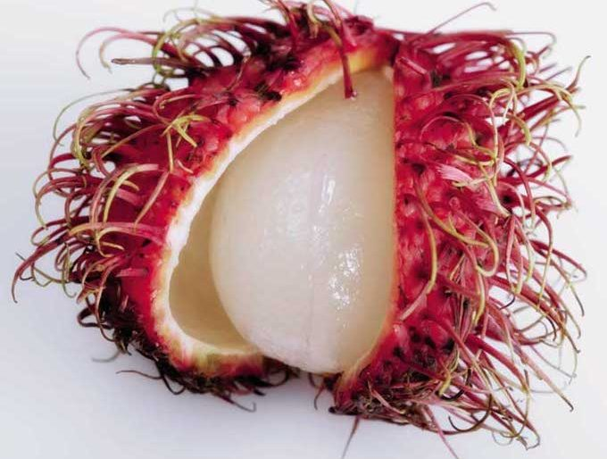 Rambutan has a semitransparent flesh