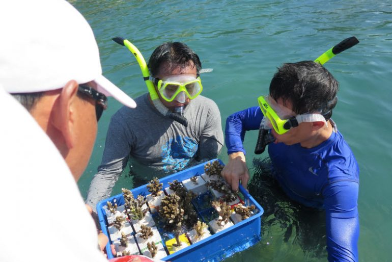 Banyan Tree Samui's CSR team re-attach corals to blocks which are then replaced in the resort's private coral reef