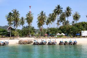 หมู่เกาะพีพี อ่าวต้นไทร