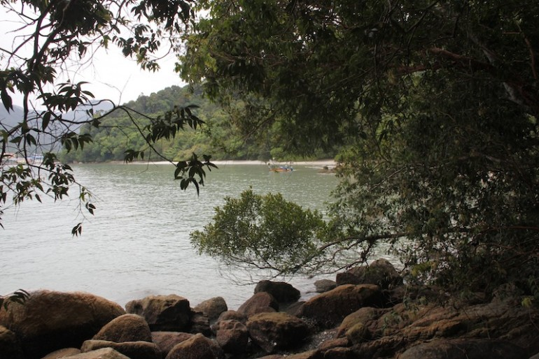 A beach within the national park