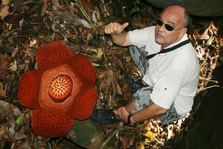 Asianitinerary team with rafflesia flower