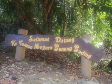 KUCHING – GUNUNG GADING NATIONAL PARK