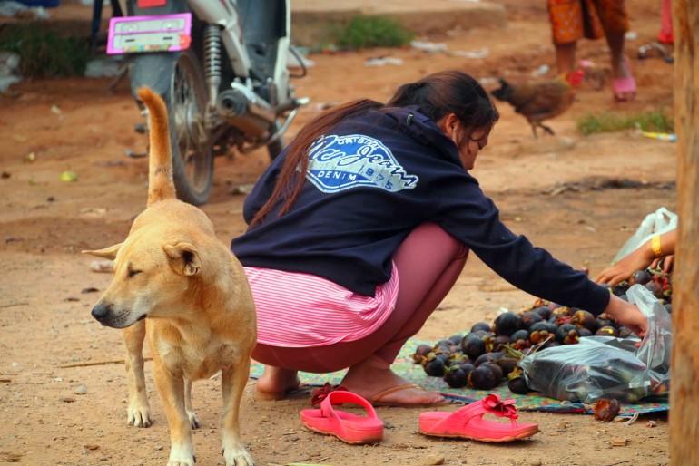 In un mercato una ragazza sceglie dei mangostine