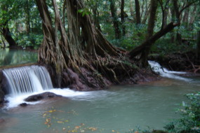 Tharnboke Koranee: a high quality trip for real nature lovers