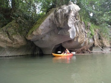 Kayaking in the Sarawak River