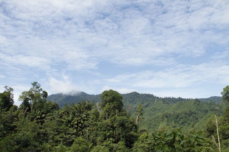 Great scenery of the Borneo mountains