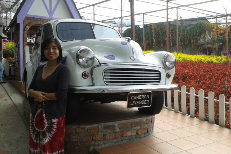 Vintage at Cameron Highlands