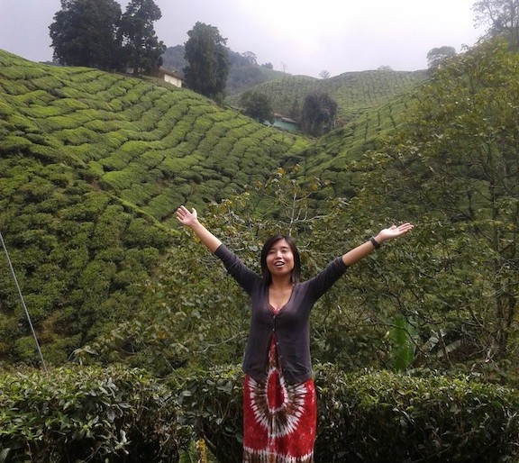 Cato at the Boh tea plantation, Cameron Highlands