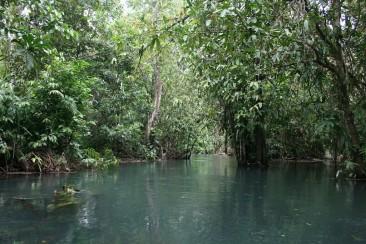 Kayaking along the Srakaew river
