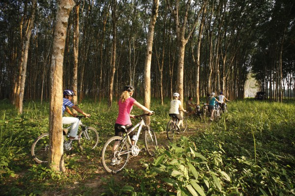 By bike through rubber plantations
