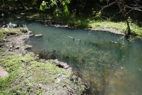 Panchor hot springs – Sarawak
