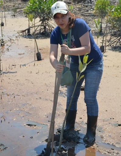 Noriko from Adventure Japan at the tree planting at Kuching Wetlands National Park