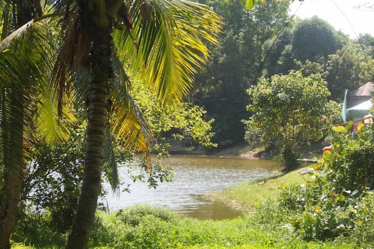 The Lake at the village