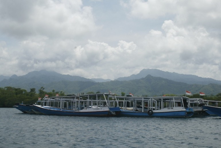 Boats mooring with Bali Barat National Park peaks behind