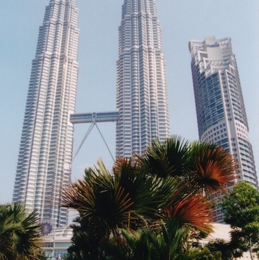 Petronas Towers from the park