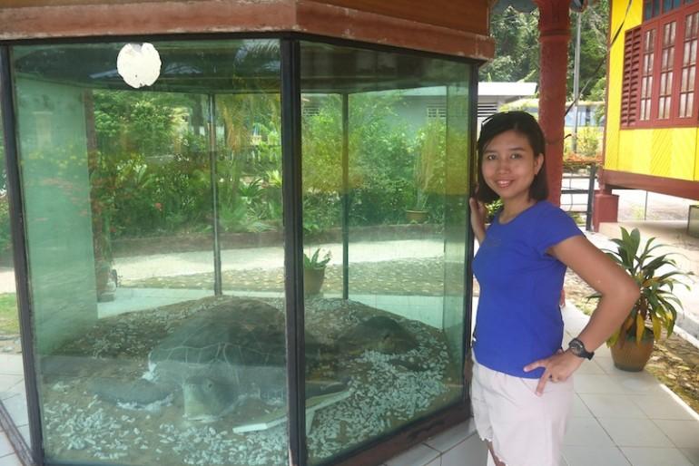 Cato standing next to a big turtle replica