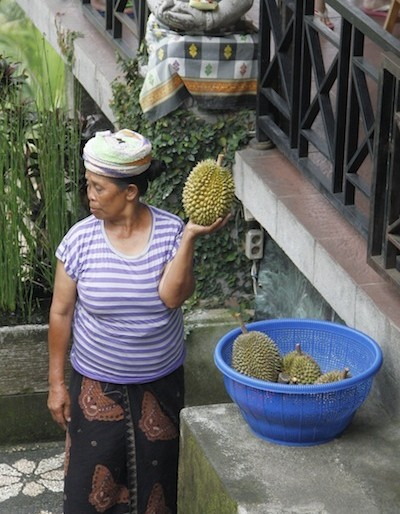 Selling durian at Tegallagang