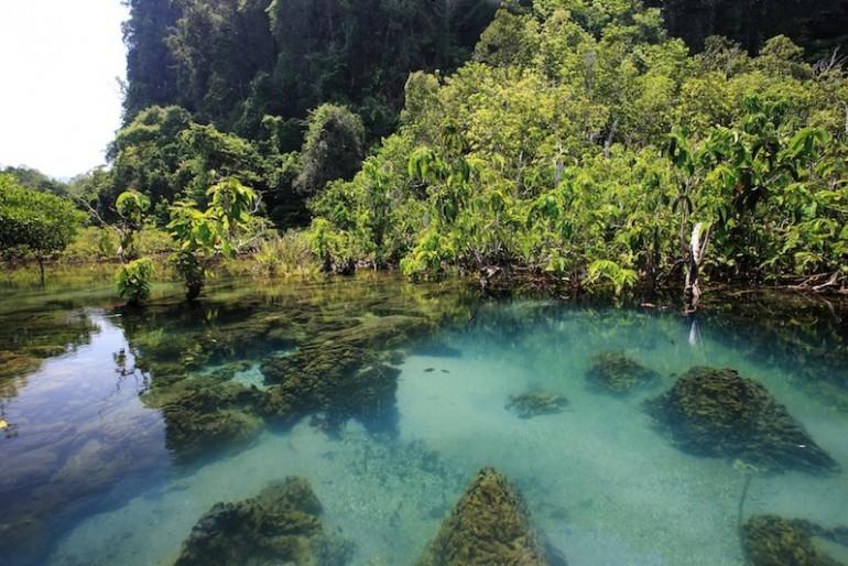 Tha Pom amazing nature