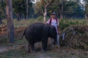 me and baby elephant at Royal Chitwan National Park