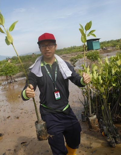 Distributing 150 mangroves