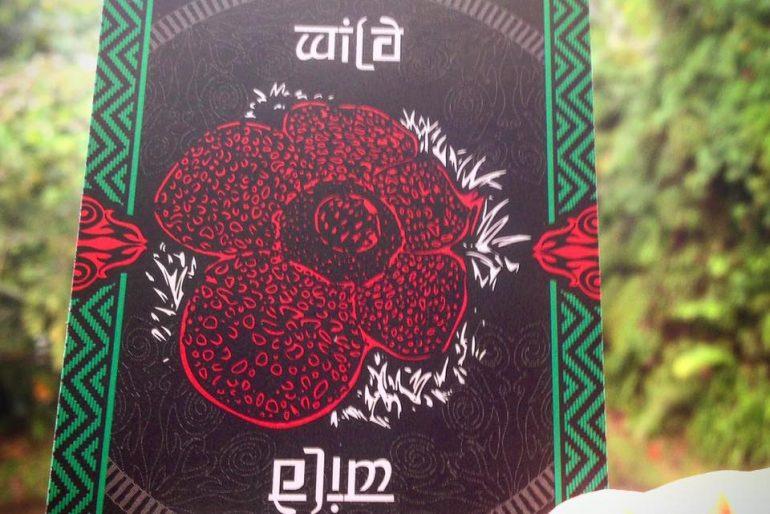 The wild card with Rafflesia