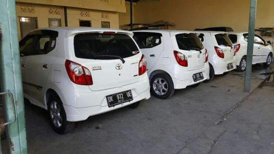 Echo Bali Car Rental cars