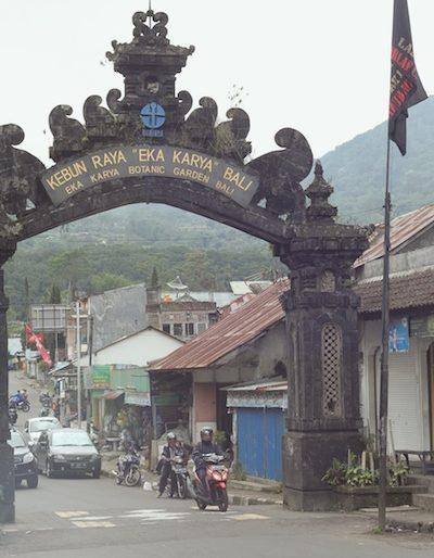 Entrance road at Bali Botanical Gardens