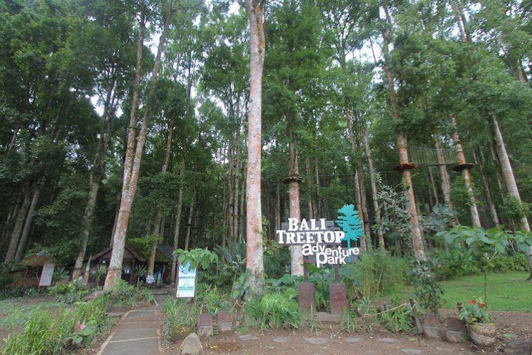 Bali Treetop entrance