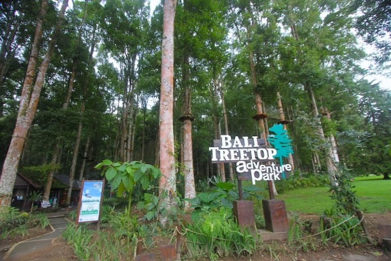 Bali Treetop main entrance