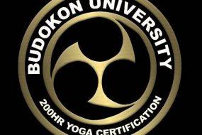 Budokon Yoga at Rainforest World Music Festival