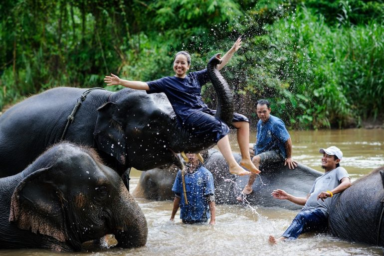 Volunteers bathing the elephants